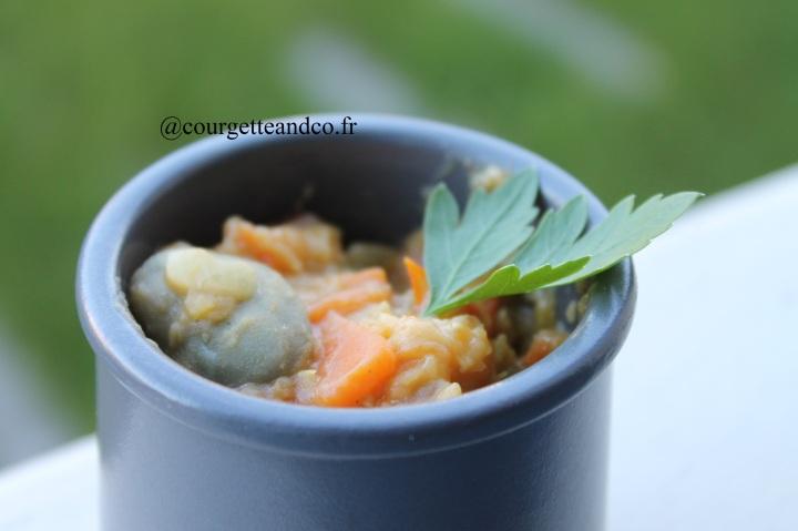 Dahl de lentilles corail/fèves et lait decoco