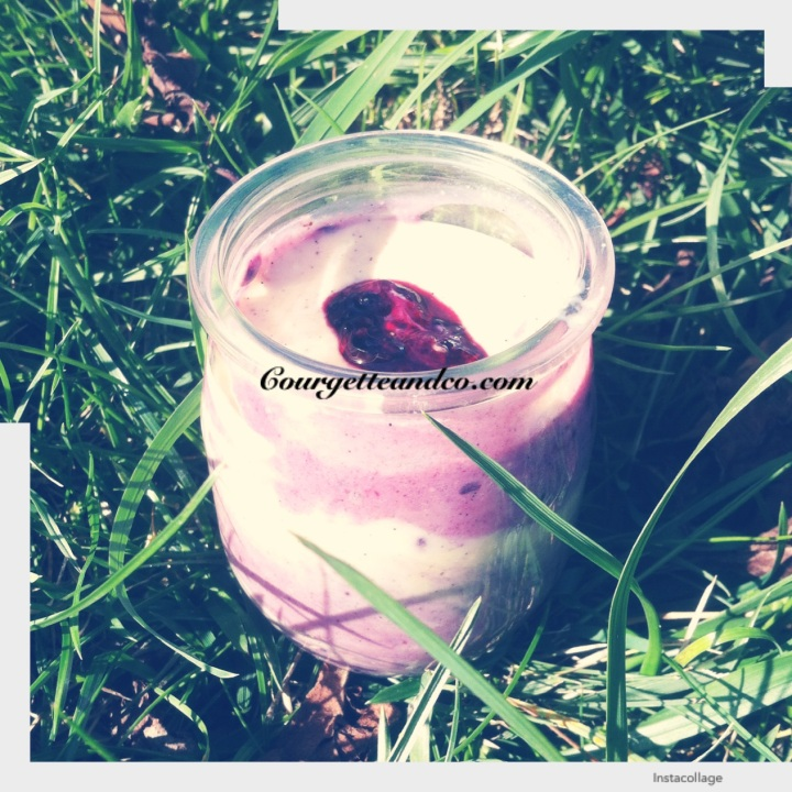Mousse végétale vanille-mûre